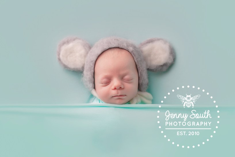 a newborn baby sleeps soundly wearing a koala hat during his newborn session.