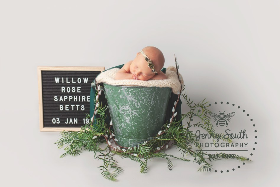 A baby sleeps in a rustic bucket surrounded by willow leaves and blossom with a sign stating her name and date of birth.