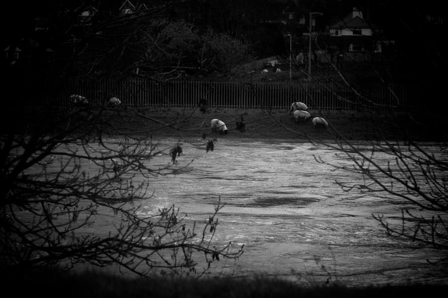 Exe_floods-17