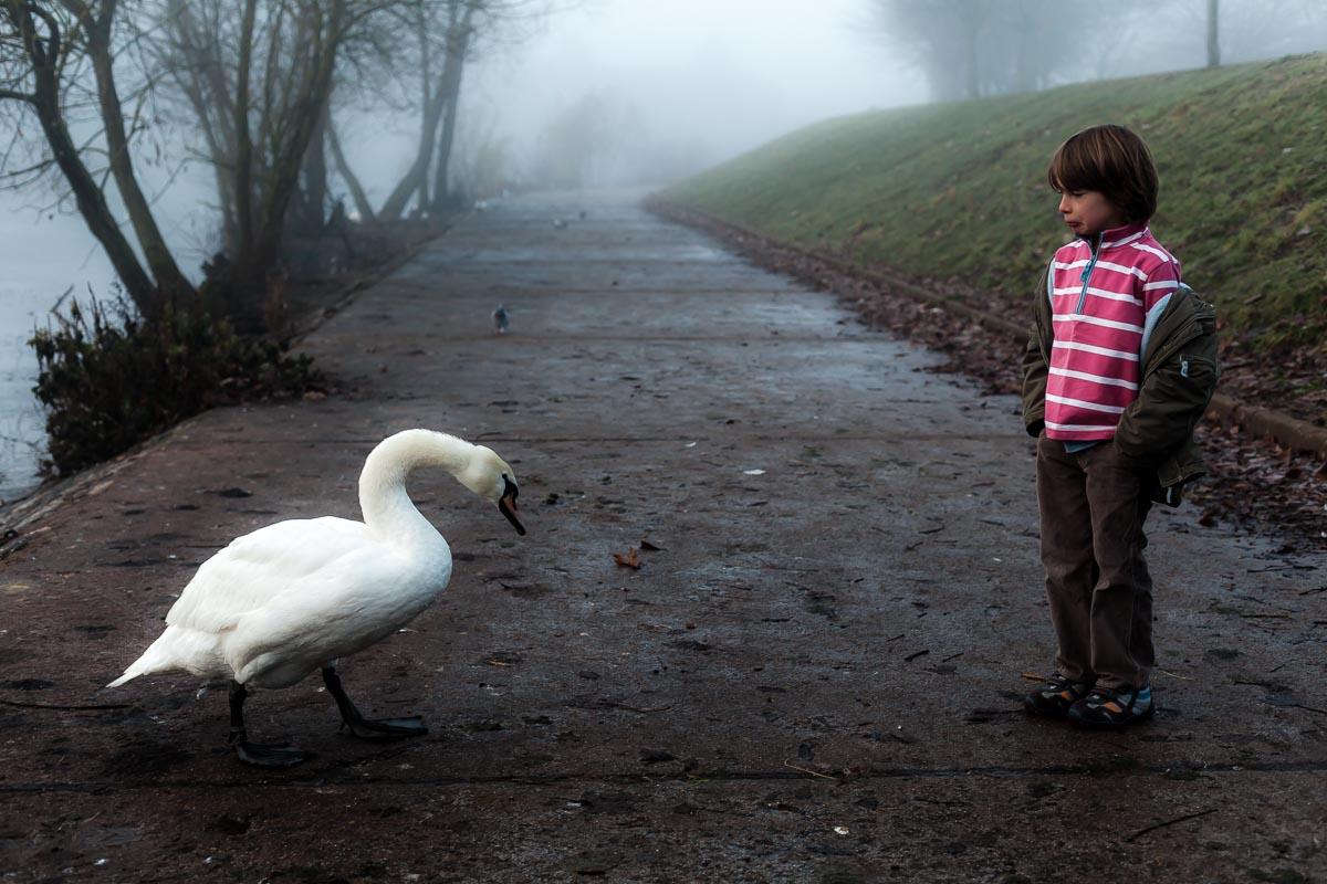 Boy_in_the_mist_swan_photographer_001