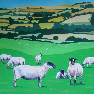 Jenny Urquhart North Devon sheep