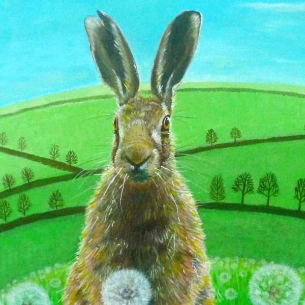fat hare sitting amongst dandleions by jenny urquhart
