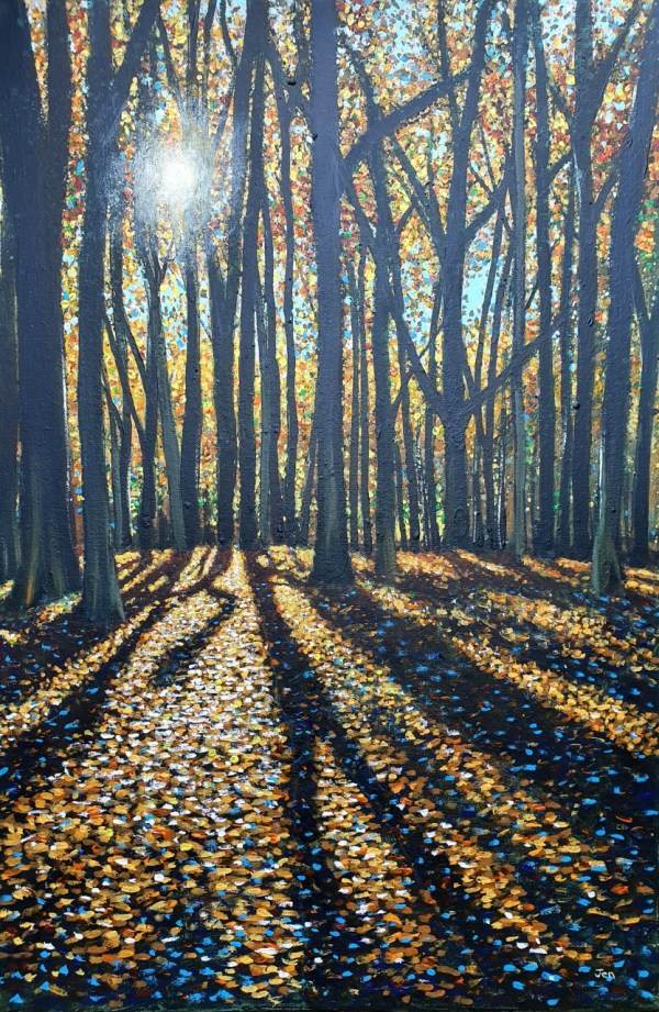 Autumn sunshine in Leigh Woods by Jenny Urquhart