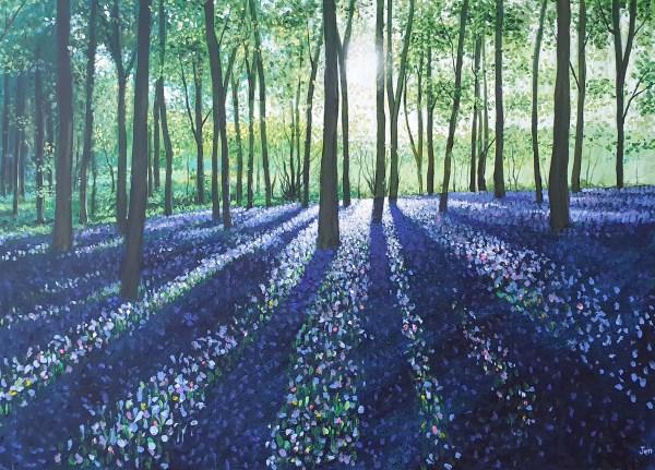 spring bluebells by jenny urquhart