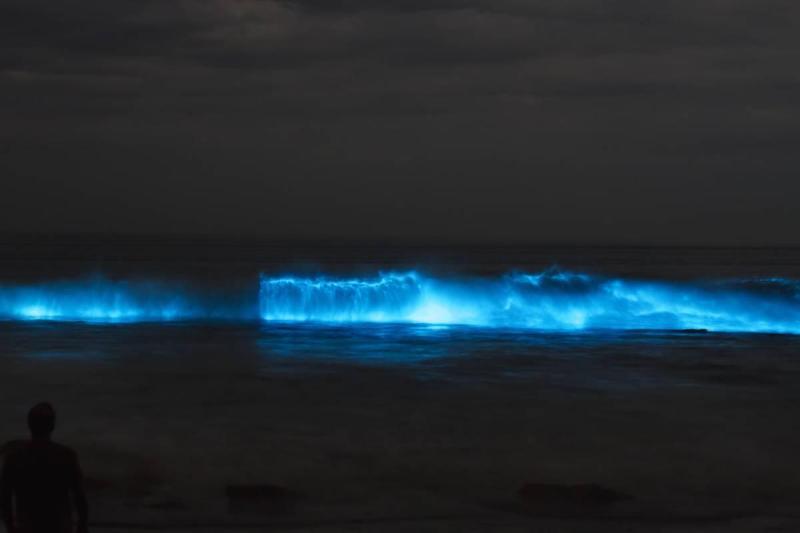 Waves lit up at night