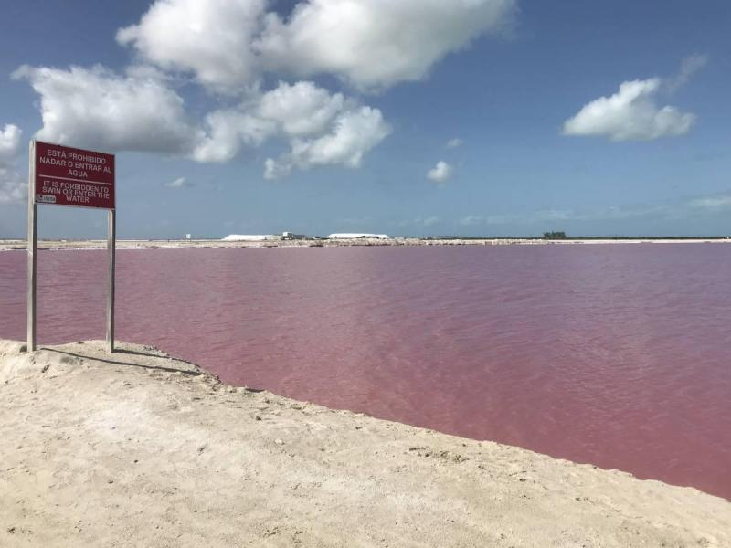 No swimming sign in Las Coloradas