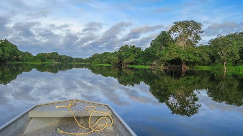 Canoe in the rainforest