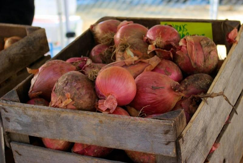 Onions in a crate