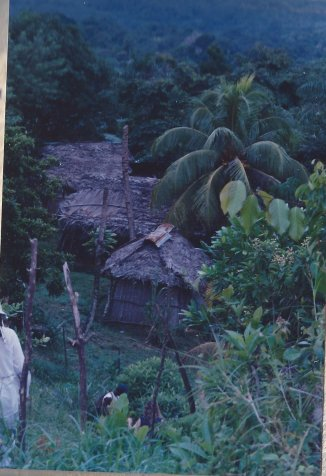 Livingston Garifuna Village