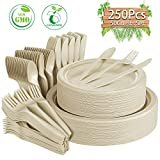 Compostable Paper Plates 250 Pcs Disposable Dinnerware Set Heavy-Duty Quality Natural Bagasse Made of Sugar Cane Fibers Biodegradable Plates and Cutlery for Party, BBQ, Picnic(Natural)  by Gezond