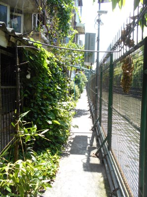 The path along the canal with a dead end in a family courtyard.