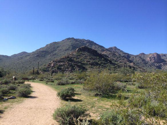 WT_trail4