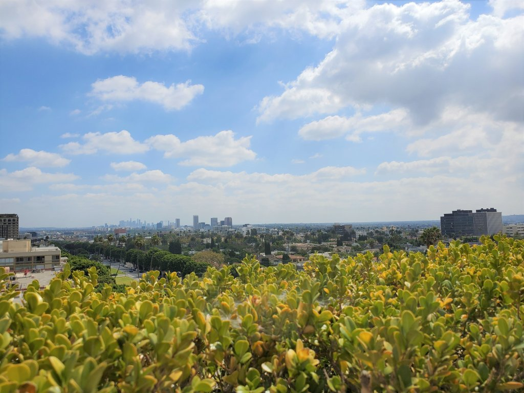 Viecroy L'Ermitage Beverly Hills rooftop view