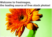 FreeImages.com is a source of free images