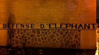 "A play on words: ""Defense of the Elephant"" v. ""Do not post"" (""Défense d'afficher"")"