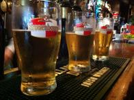 A row of Irish lagers in Kronenbourg pint glasses at Galway Irish Pub