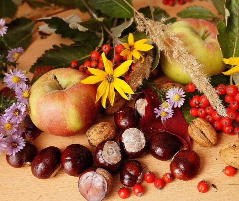 Les noms des fruits en provençal (de Nèfle à Raisin)