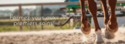 Classe Equine, la formation vétérinaire pour les cavaliers