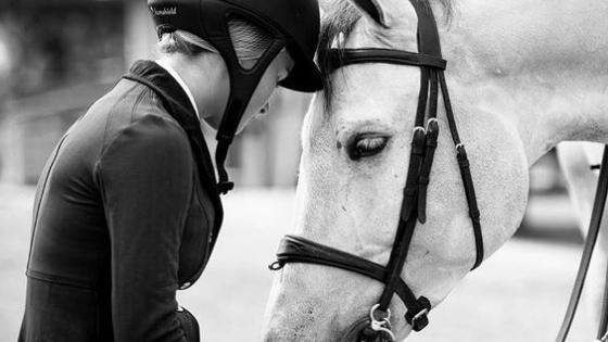 ce-sentiment-echec-equitation-cevalier-reflexion-blog-je-peux-pas-jai-poney-lucio-landa.png