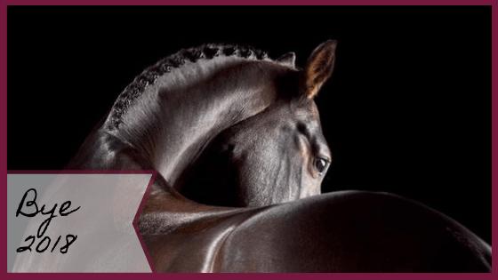 bilan-2018-blogging-equestre-equitation-cavaliere-blog-je-peux-pas-jai-poney