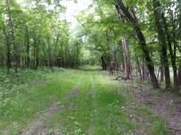Biking Rural Scott County Minnesota (2)