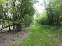 Biking Rural Scott County Minnesota (4)