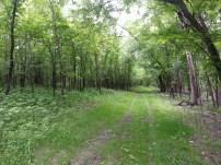 Biking Rural Scott County Minnesota (5)
