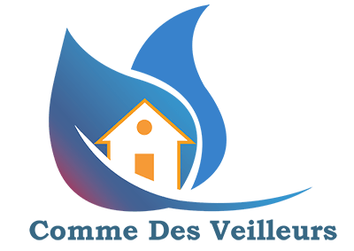 Logo Commedesveilleurs.com | Jeremy-lagache.fr