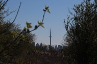 Toronto CN Tower from the Humber Bay Park