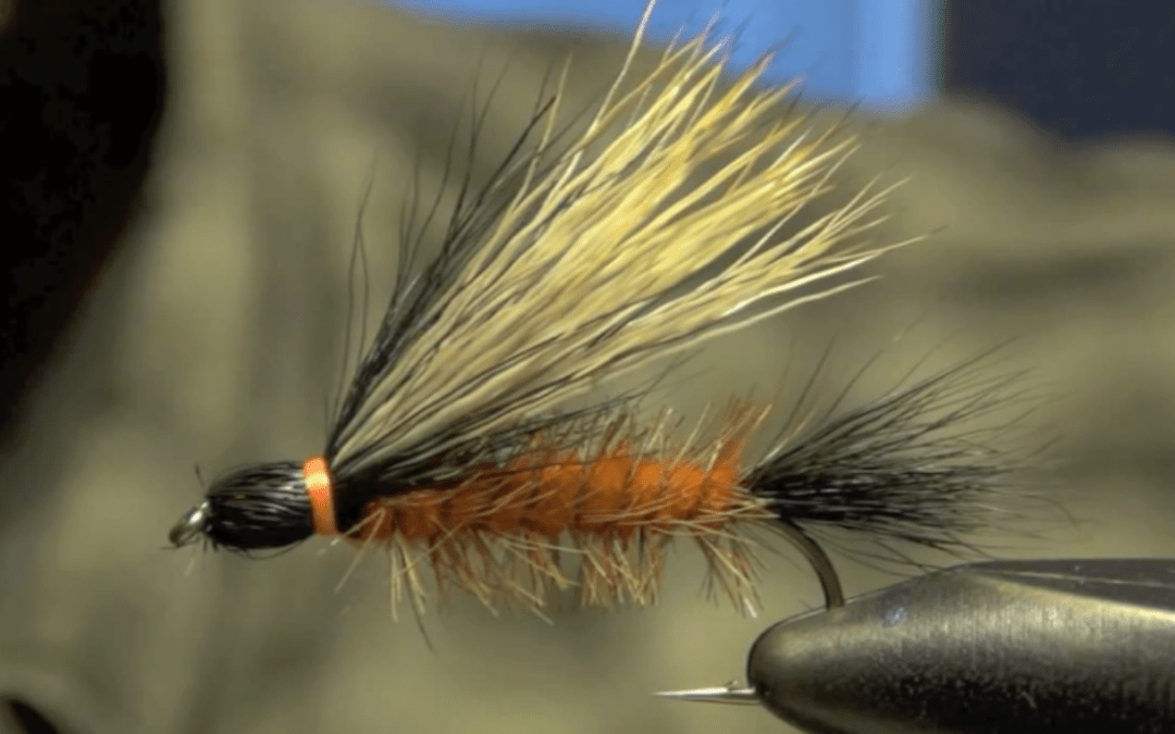 Henry's Fork Salmonfly – Fly Pattern of the Week