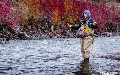 Spring FlyFishing on the Provo River