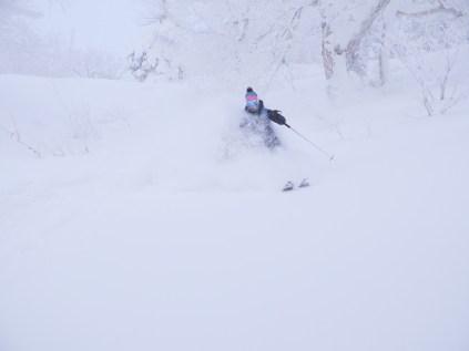 Ski de poudreuse au Japon