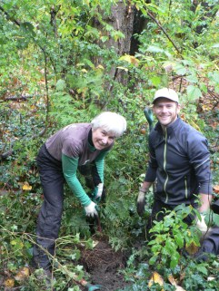 Mother and son plant a western red cedar