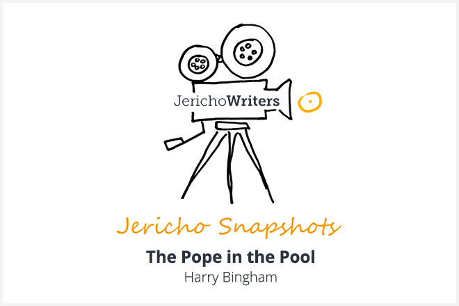 The Pope in the Pool - Harry Bingham