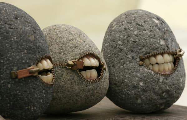 Picture of zippered rock mouths