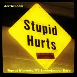 Picture of Stupid Hurts Sign