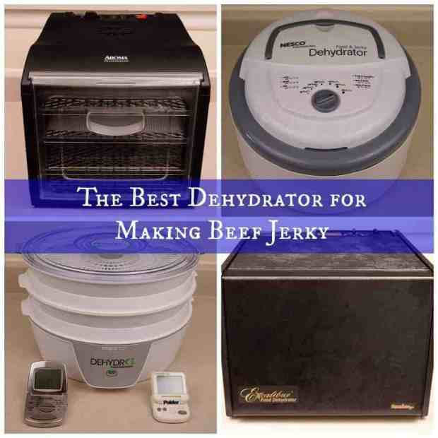 The Best Dehydrator For Making Beef Jerky