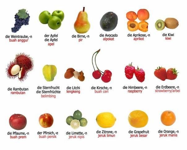 Gambar Buah-buahan Bahasa Jerman