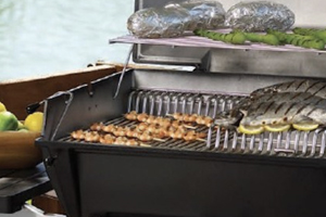 products-gas-grills