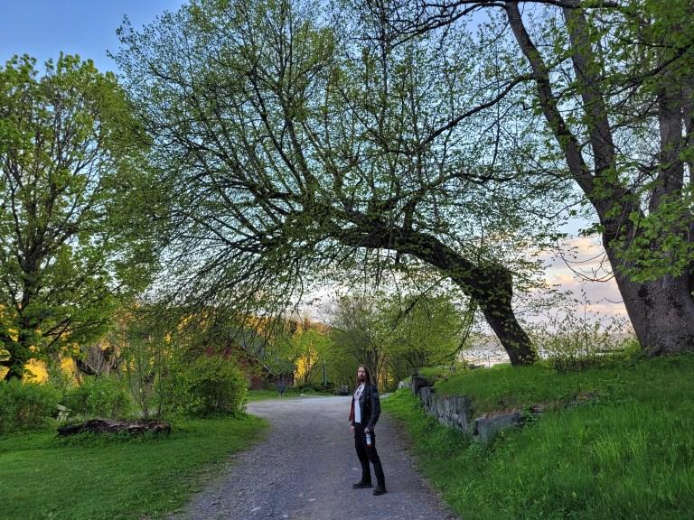 Svartalv. Foto: Jernverket/Helle Stenkløv