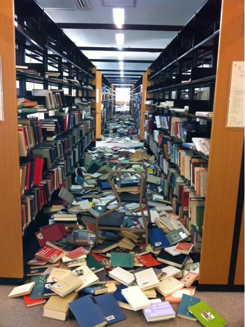 Galerij van omgevallen boekenkasten