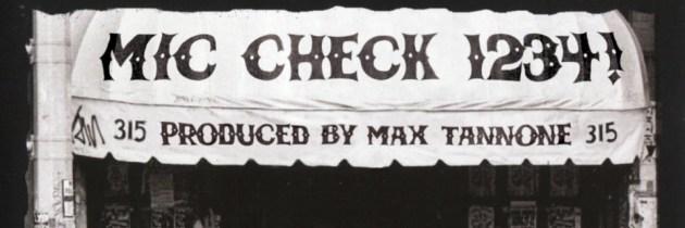 Mic Check 1234!: een geweldige collectie punk/rapmashups