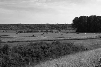 polderlandschap 2