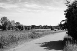 Vlietbergweg