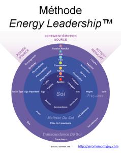 methode energy leadership