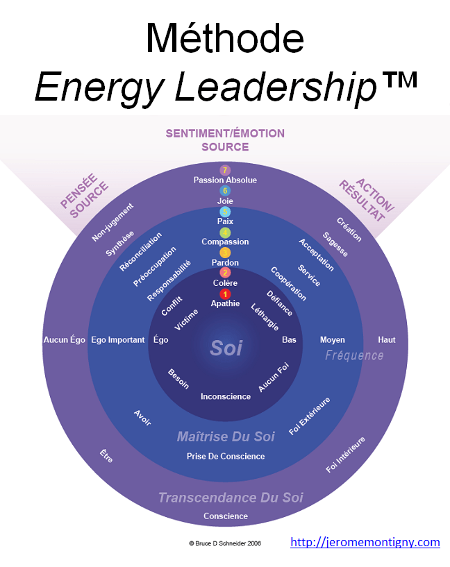 methode energy leadership