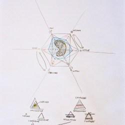 jerome pierre dessins portrait diagrammatic bleu