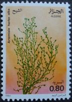 Algeria - Artemisia herba-alba, 1982