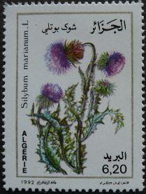 Algeria - Milk thistle, Silybum marianum, 1982