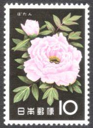 Japan, flowers, Tree paeony